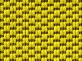 Heavy Gauge_Citron.jpg