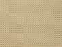 Fraternity Row - Sigma Sand
