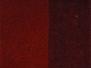 National Velvet - Persimmon