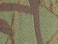 trelliscactus